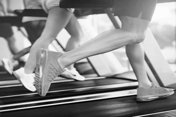 Espace cardio fitness passion